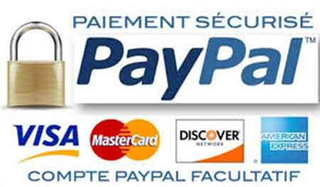paypal-transaction